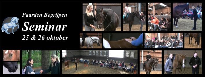 Paarden Begrijpen
